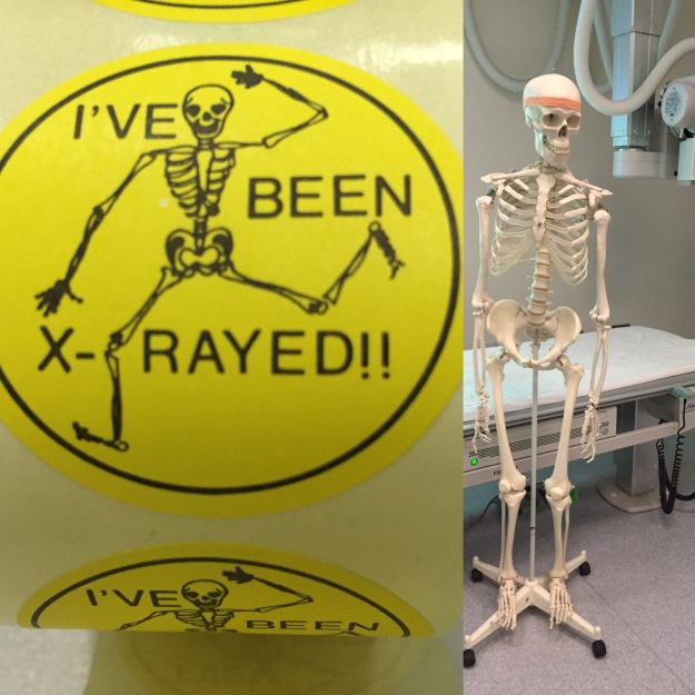 Feeling right 'at home' teaching in an X-ray room!